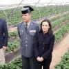 PRESENTACIÓN DEL DISPOSITIVO DE SEGURIDAD PARA LA CAMPAÑA AGRICOLA